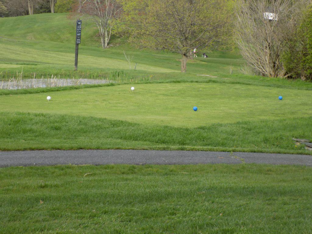 Twaalfskill Golf Course Image 1
